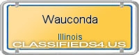 Wauconda board
